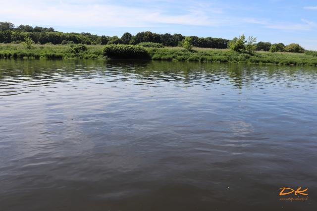Natur am Fluss