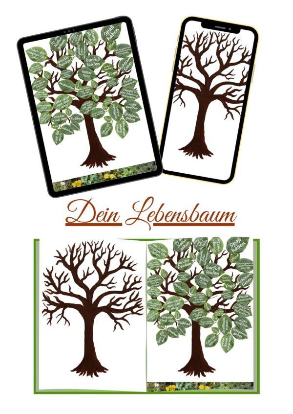 Bonus Bilder Lebensbaum